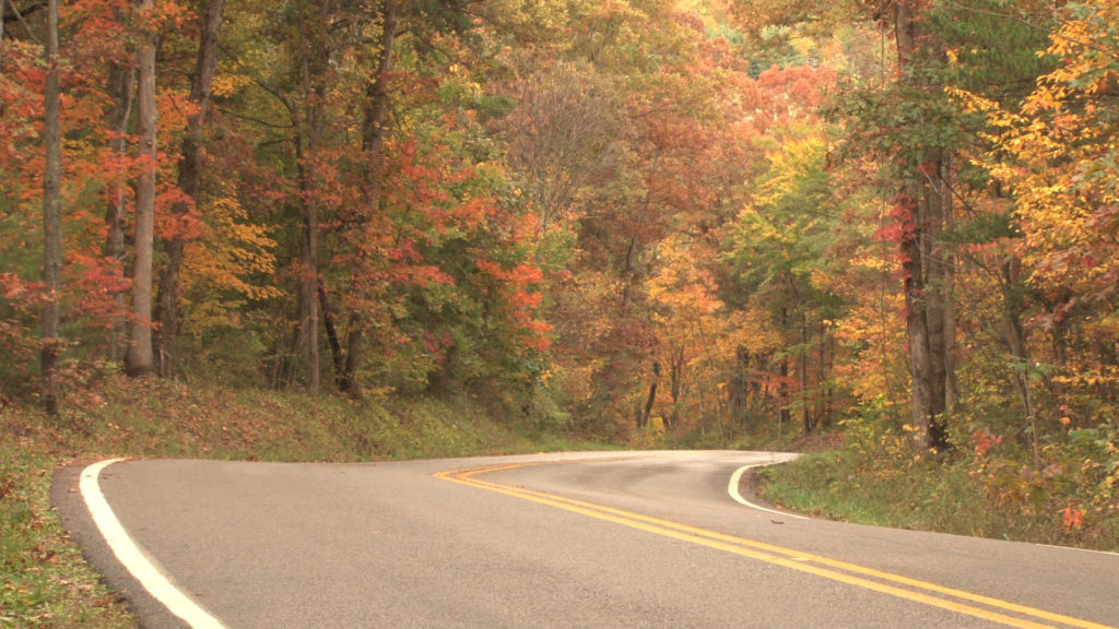 Allegheny Forest Alliance Home Page Image
